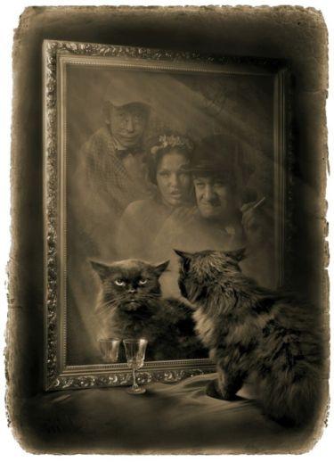 В зеркале прошел здоровеннейший черный кот и также пропал. «Мастер и Маргарита». Фотоиллюстрации Елены Мартынюк.