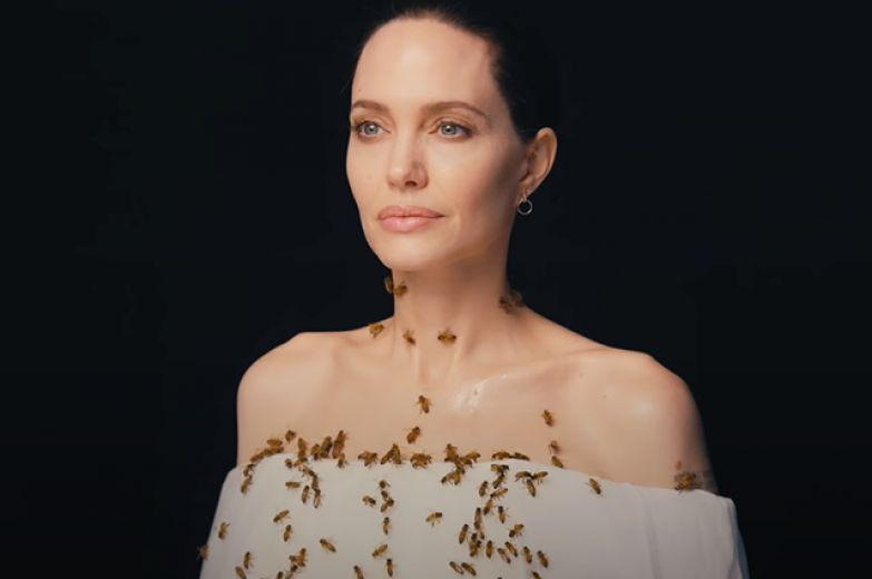 Анджелина Джоли снялась в фотосессии с роем пчел на теле