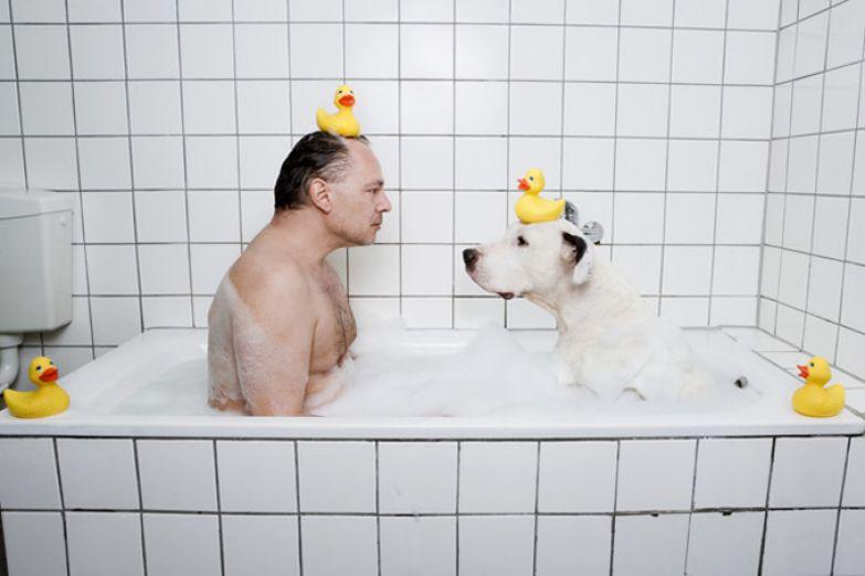 Что такое счастье? 5 подсказок от вашей собаки