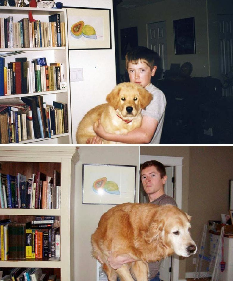 Мидас и я: 10 лет вместе до и после, друзья, собаки, фото