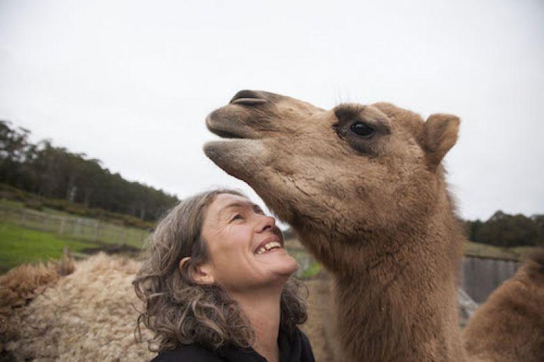 Эмма и верблюд улыбаются друг другу