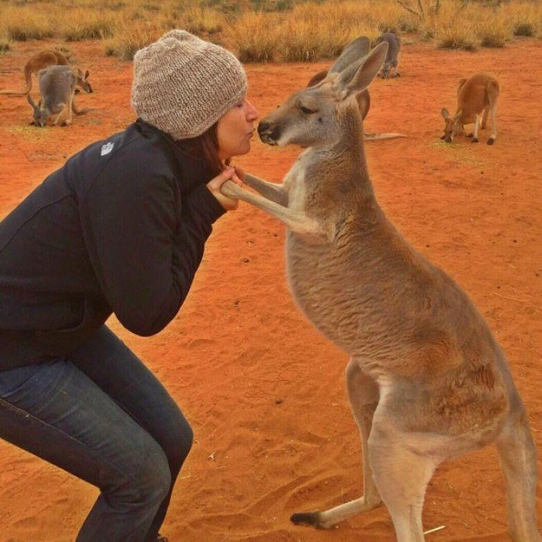 И вот так начинается каждое утро... австралия, животные, кенгуру, обнимашки