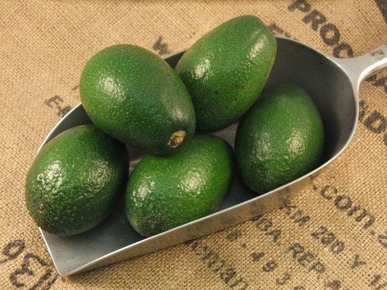 польза авокадо для беременных