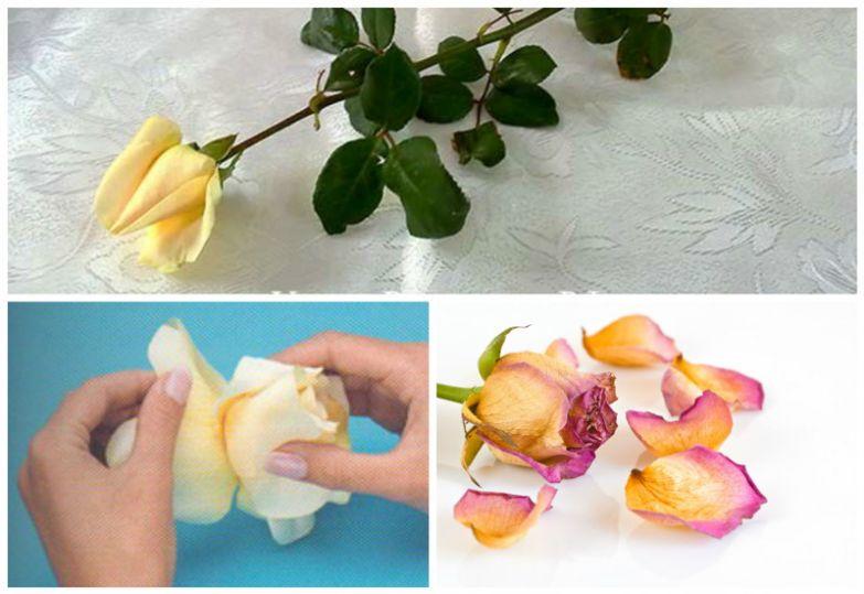 """""""Бутоны"""". низкое качество, обман, флористика, цветы"""