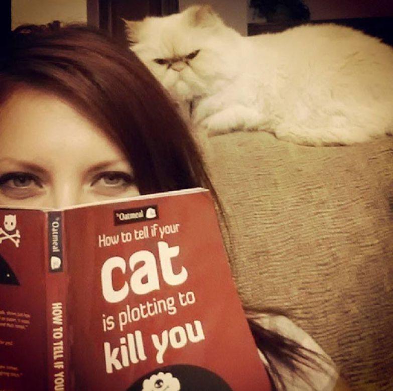 Узнать ваш кот собирается вас убить
