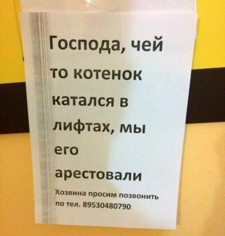 ribalych.ru