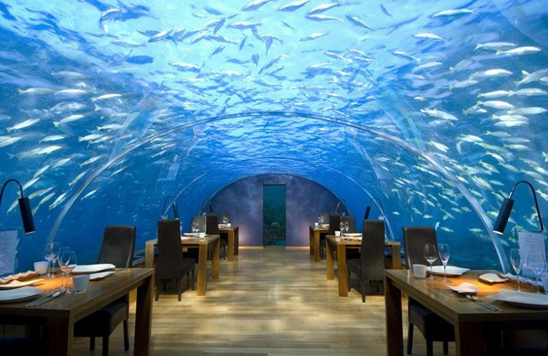 Ресторан на глубине 5 метров, Ithaa Undersea Restaurant, Мальдивы мир, подборка, ресторан