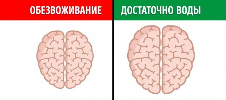 12 неожиданных вещей, которые вредят мозгу