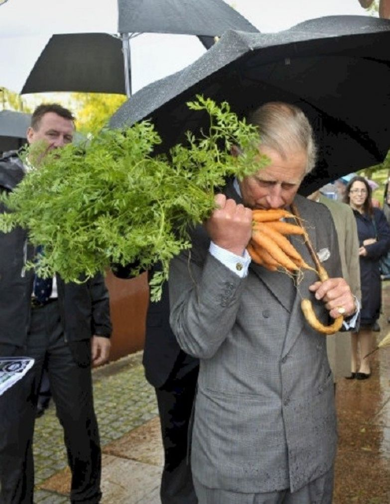 10. Вот что случилось, когда принц Чарльз узнал, что морковь полезна для зрения британия, королева Елизавета, королевская семья, этот неловкий момент