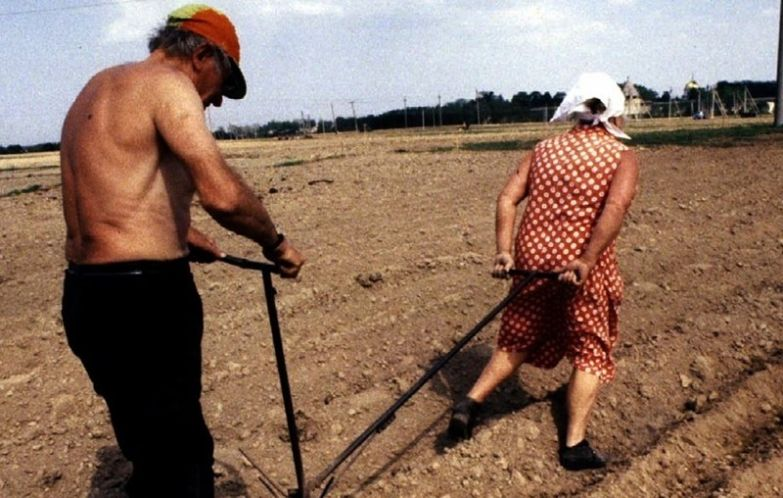 3. Как правильно вспахивать землю дача, дачники, огородники, прикол, фото