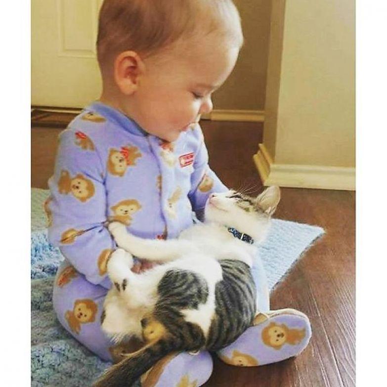 16. Эта фотография растопит ваши сердца кот, малыш, очарование