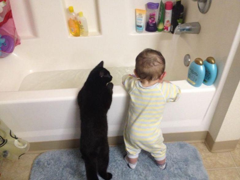 """20. """"Не верь им...Водные процедуры - нечто ужасное"""" кот, малыш, очарование"""