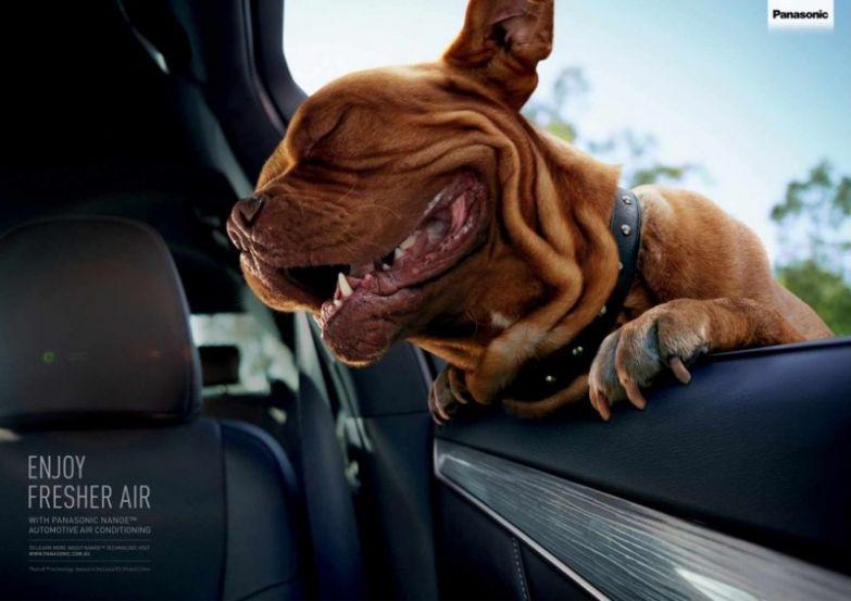 1. Автомобильные системы кондиционирования Panasonic настолько хороши, что внутри автомобиля просто хочется жить интересно, креативная реклама, рекламные, трюки