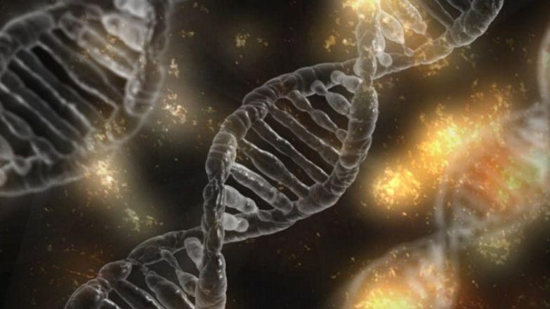 Знаете ли вы, что яйцеклетка выбирает сперматозоид, а не наоборот?
