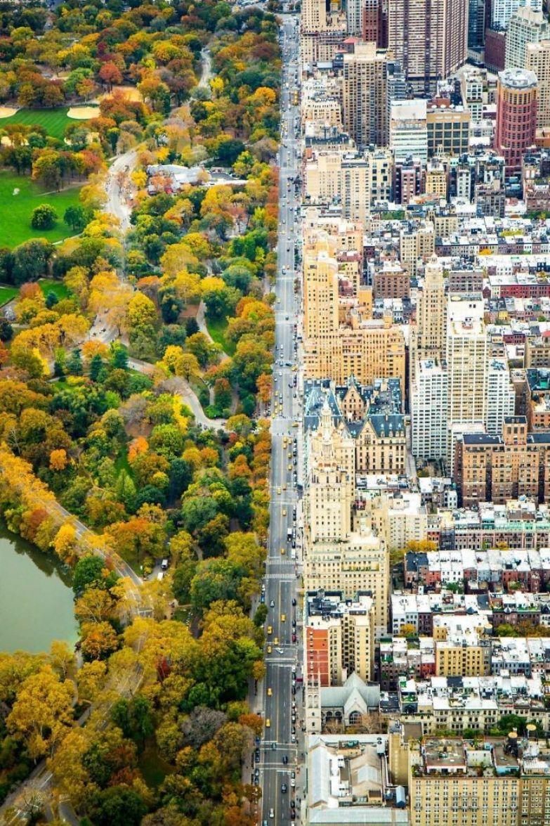 Нью-Йорк. Граница Центрального парка искусство, мастерство, фото