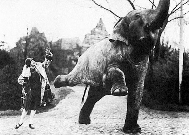 Рядом с Павловой и слон танцует. / Фото: true-love.uol.ua