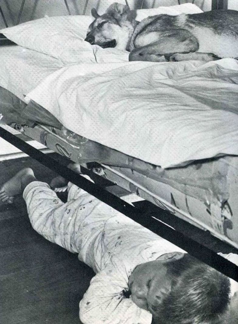 18. Мальчик делится постелью с лучшим другом архивные фотографии, лучшие фото, ретрофото, черно-белые снимки