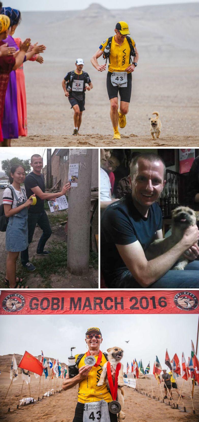 17. Бездомный пес, присоединившийся к спортсмену во время забега, потерялся после соревнования, но марафонец вернулся в Китай, чтобы найти его доброта, мир, поступок
