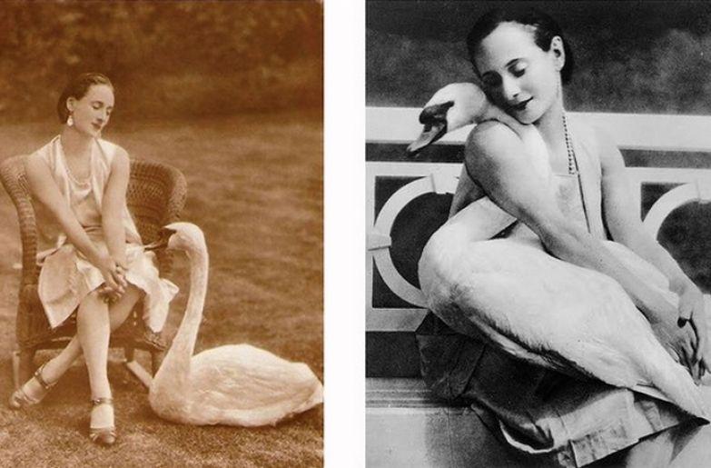 Анна Павлова и её лебедь. / Фото: loveread.ec